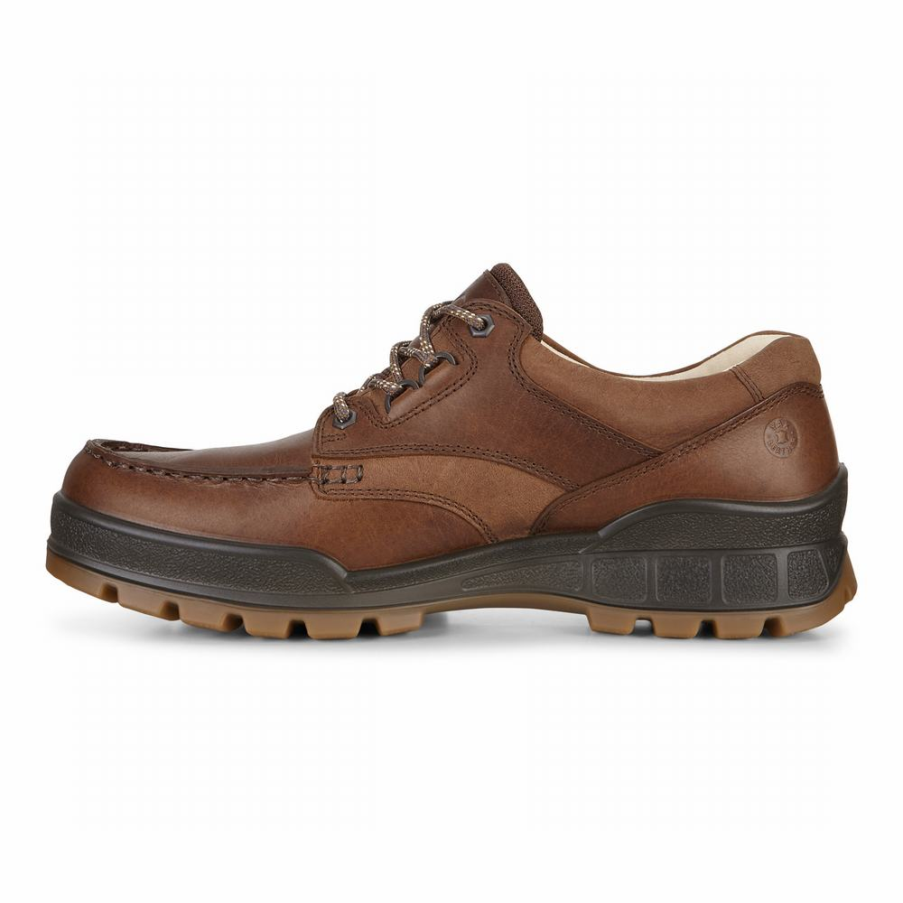 ECCO Mens Track 25 Low Casual Shoes | 22056-939