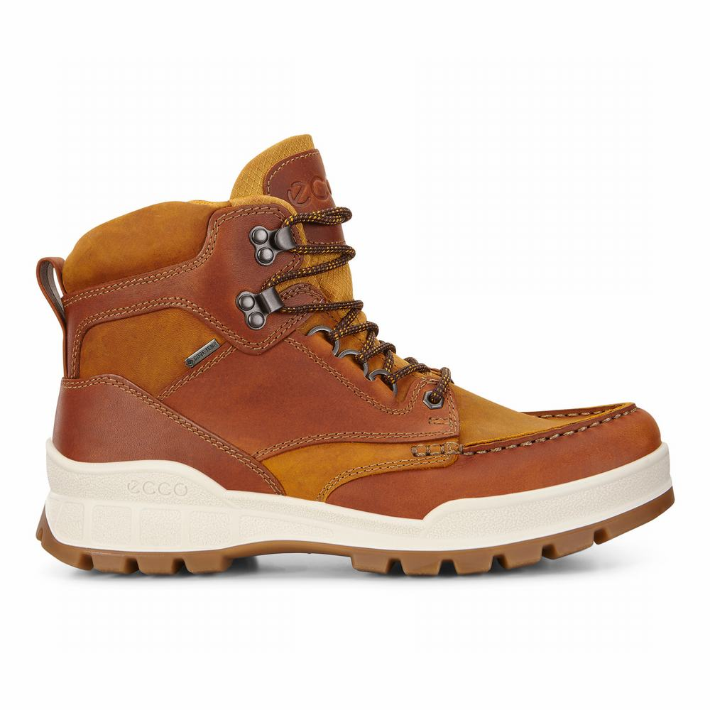 ECCO Men's Track 25 High Boots | 51684-489