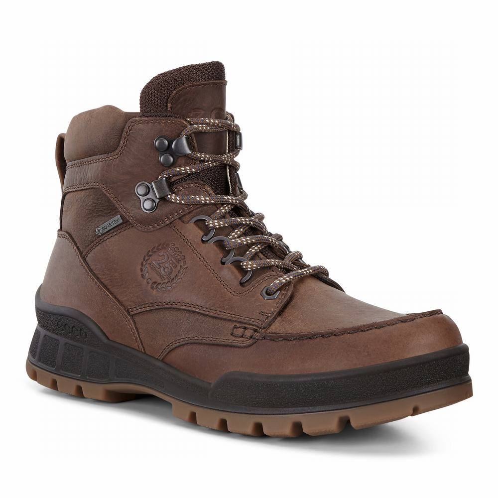 ECCO Mens Track 25 High Boots | 90756-754