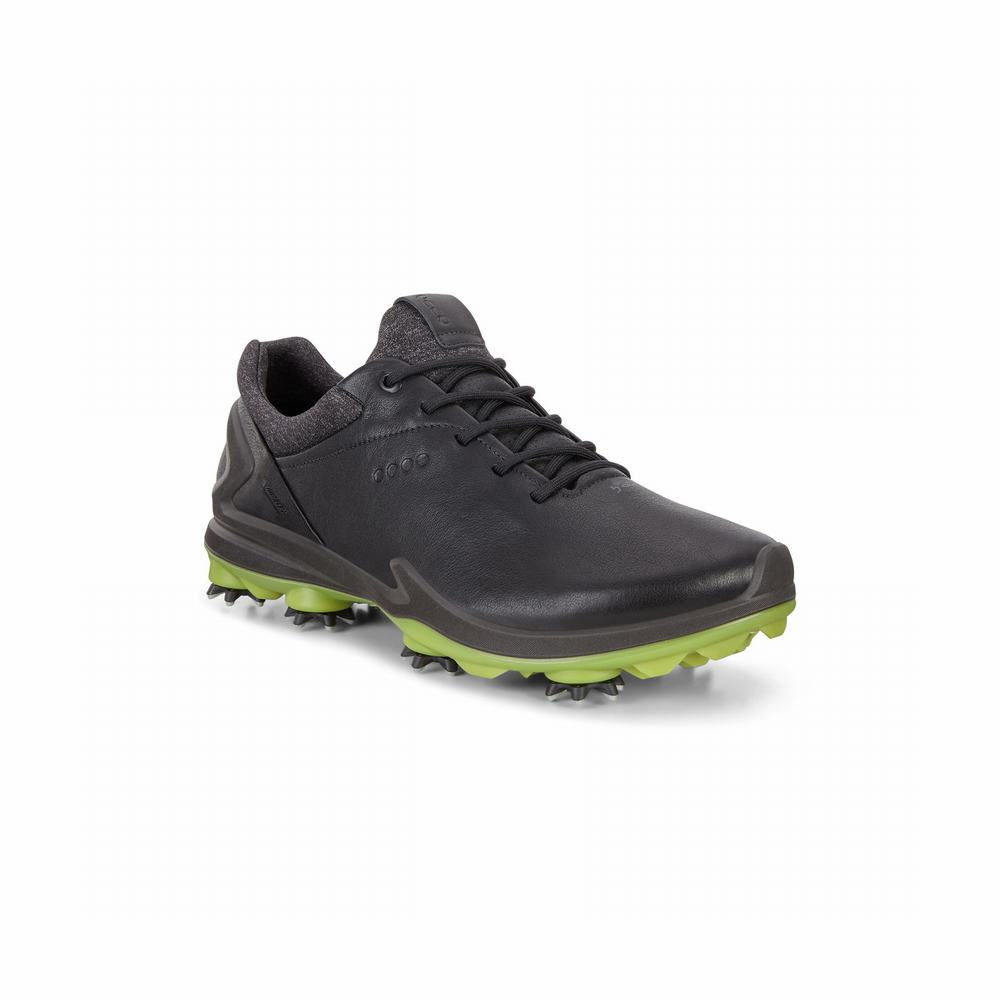 ECCO Mens BIOM G3 Golf Shoes | 24771-978