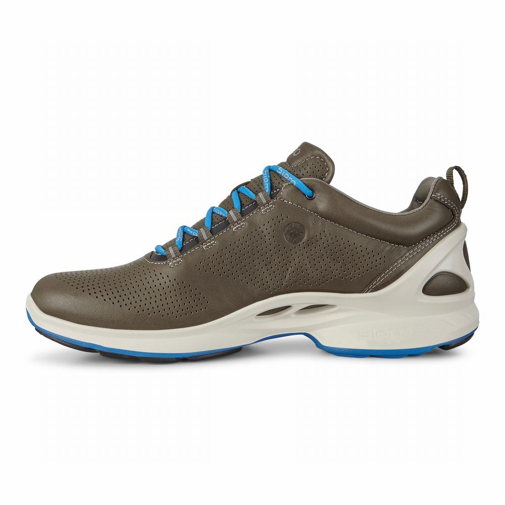 ECCO Mens BIOM Fjuel Hiking Shoes | 81438-952