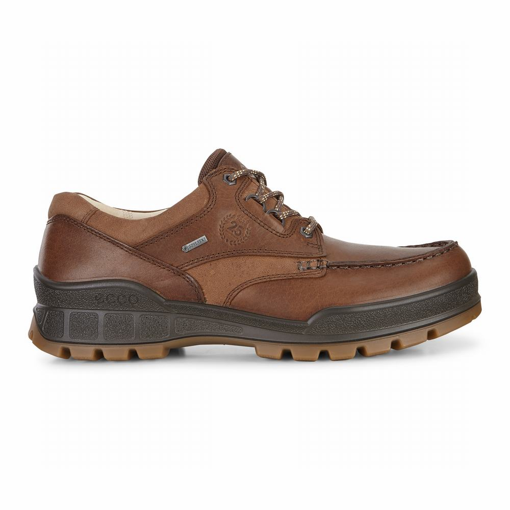 ECCO Men's Track 25 Low Hiking Shoes | 96021-666