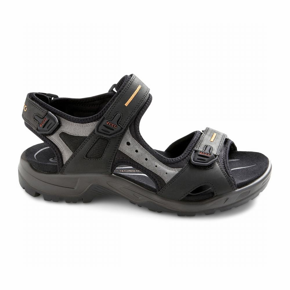 ECCO Mens Yucatan Sandals | 14090-377