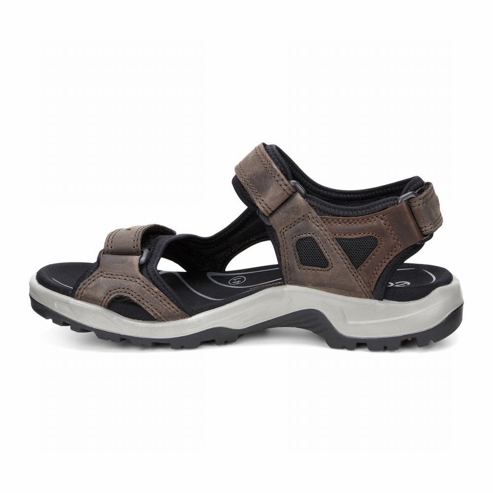 ECCO Mens Yucatan Sandals | 80871-391