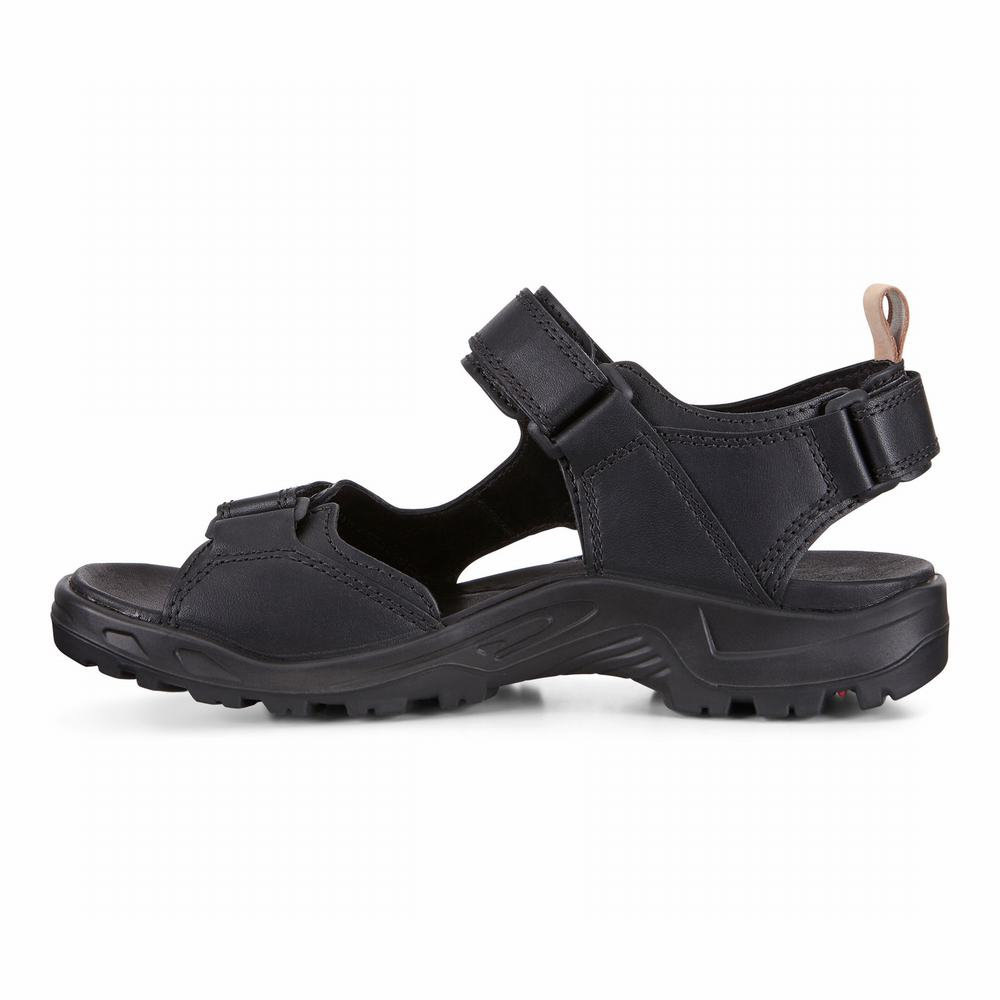 ECCO Men's Offroad 2.0 Sandals | 43466-179