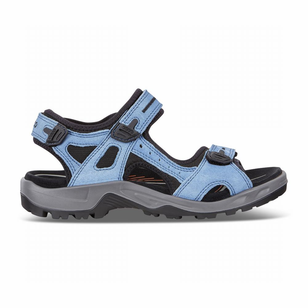 ECCO Men's Offroad Sandals | 37231-275