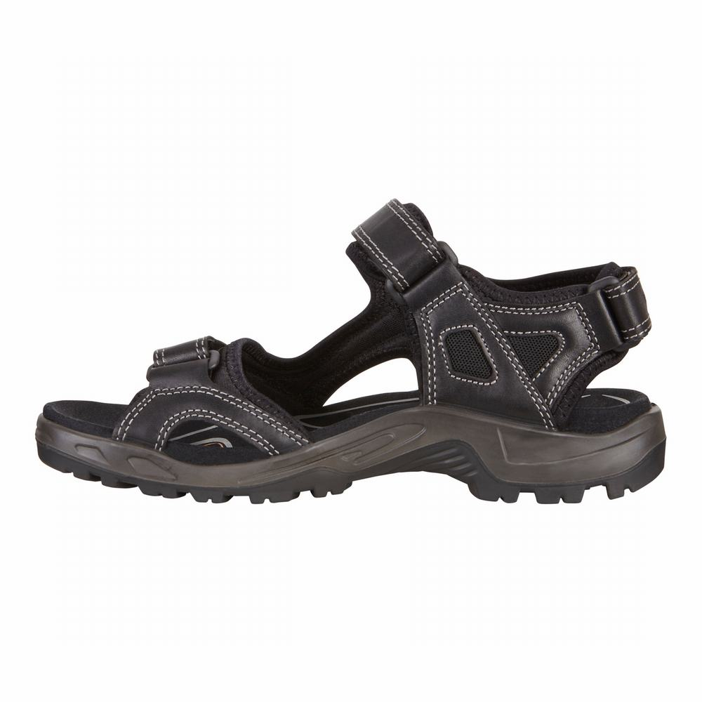 ECCO Men's Offroad Sandals | 25027-528