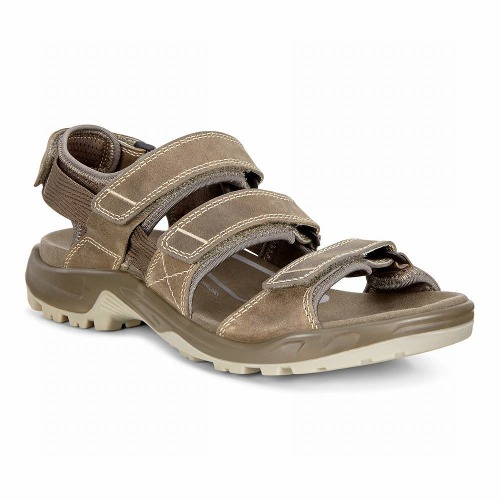 ECCO Men's OFFROAD Sandals | 10618-256