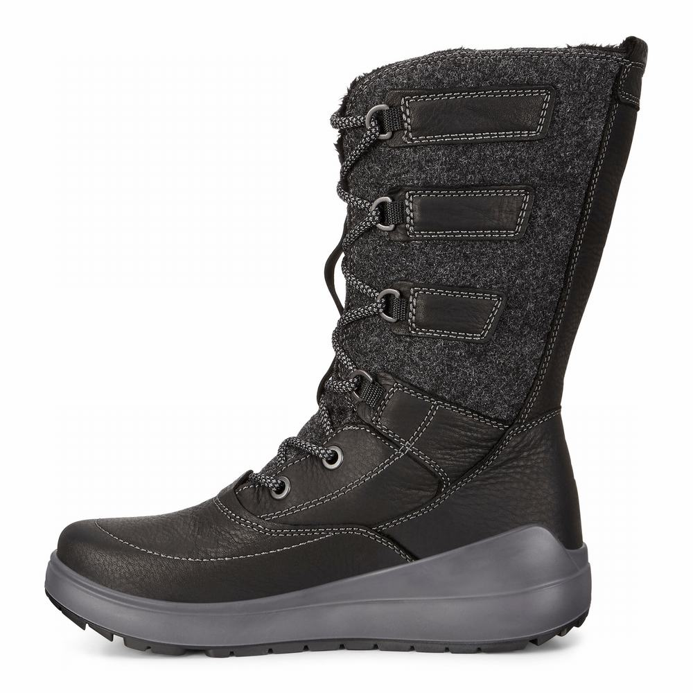 ECCO Noyce Ladies Tall Boots | 10100-995