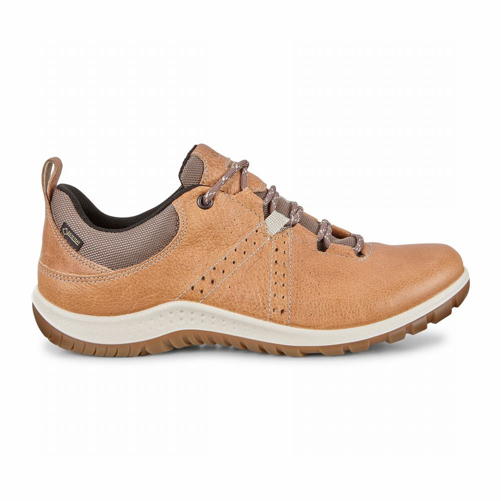 ECCO Aspina Low GTX Tie Ladies Hiking Shoes | 61460-439